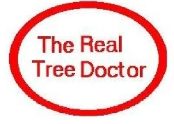 tree care logo for Tree doctor 4